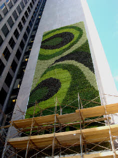 PNC living wall