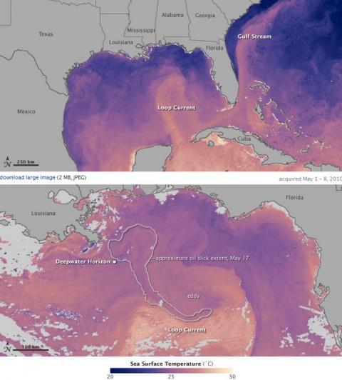 gulf oil spread