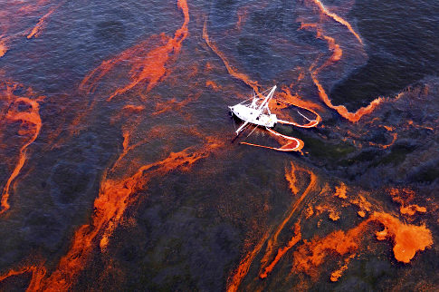 BP spill damaged sea-floor life for 57 square miles
