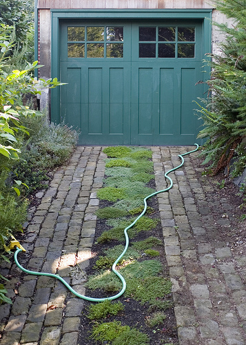 Green Grass Driveways And Paths