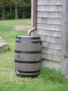Wood Rain Collection Barrel