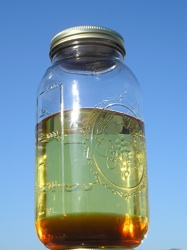 Bio Diesel Home Brew