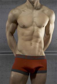 c-in2 bamboo underwear