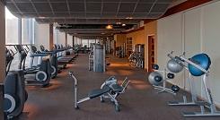 Elaia Gym