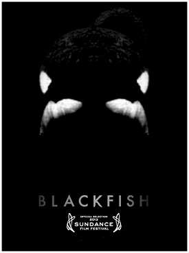 blackfish seaworld documentary