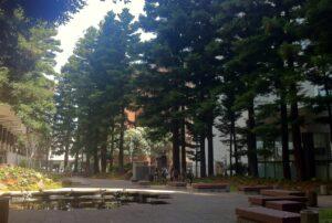 TransAmerica Building Park