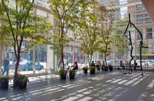 sunny urban greenhouse
