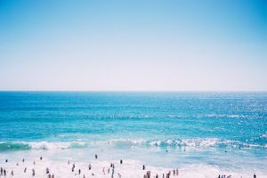 sunscreen toxins